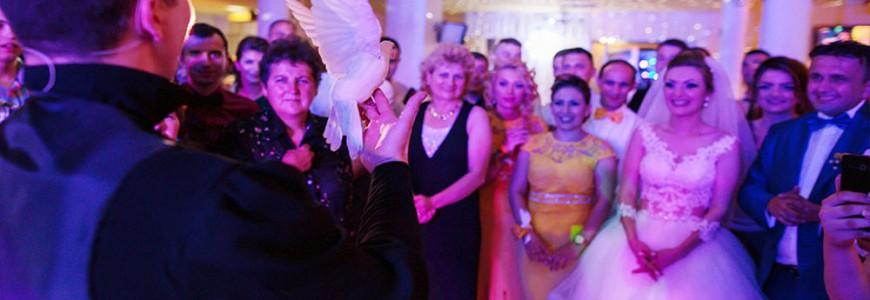 Magician-pentru-nunta-craiova-lorenzo-cristian