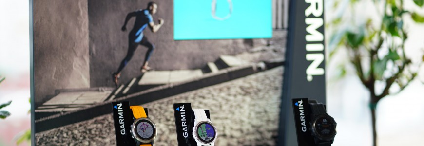 Seria Garmin fenix 5 plus (2)